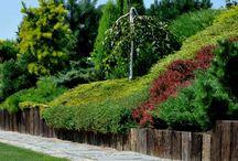skarpy w ogrodzie