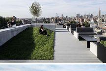 Office garden / Ogród przy firmie