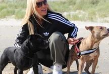 Linse Kessler / Kæmper altid for dyrene