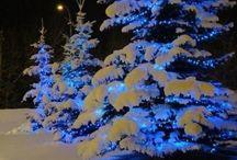 Winter christmas lights / Winter magic lights
