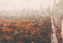 Places♡|Foxtail