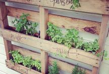 HOME | Gardening
