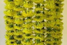Torkade blommor (arrangemang)
