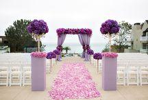 Radiant orchid wedding Board