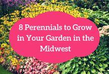 Midwest Garden
