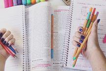 •estudo•