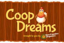 Coop Dreams / Join the hilarious adventures of a suburban family gone rural in search of a more sustainable lifestyle.  Dad's dream is to try raising backyard chickens, but other family members are not as.....enthusiastic.