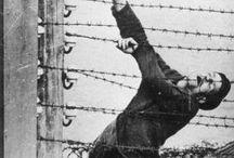 Auschwitz...☹️...!!! e gli orrori di tutte le guerre......!!!
