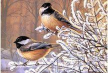 Птицы картины