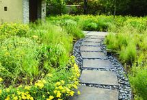 Outdoor Paths / by Julie {The Hyper House}