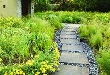 Backyard + Gardening
