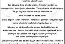 okul öncesi türkçe dil