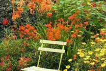 Cottage garden furniture