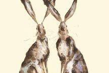 Zające i króliki