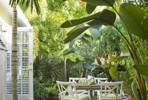 tropical idea