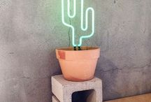 cactuslife