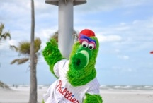 Phillie Phanatic takes over Clearwater