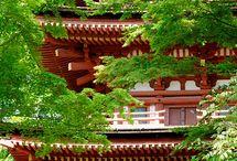 Jardins, temples et autres choses zen