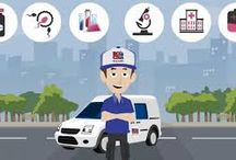 Couriers  Services in Boston