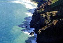 Hawaii / Hawaiian ideas / by Kelly and Rich Nielsen