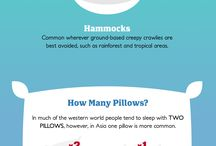 Everyone Loves Infographics
