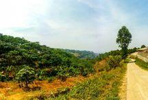 Landscape Fotography