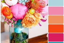 To Color Palette Spring