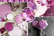 Radiant Orchid  / Pantone's Color of the Year