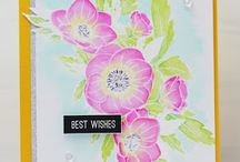 Anemone Wishes/Summer Blooms