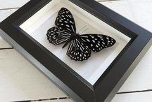 Items by nature / Handgemaakte items Handmade items