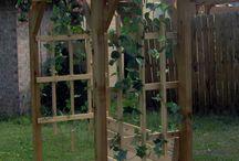 Garden and yard ideas!!