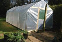 Kitchen Garden Polytunnel