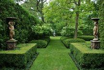 gardens / by sue wolfe