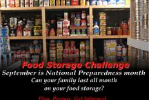 Food Storage Challenge / It is best to test if you are prepared before a disaster hits