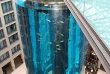 Glass Aquariams  / Stunning examples of Glass Aquariums.