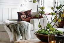 plante arrangementer