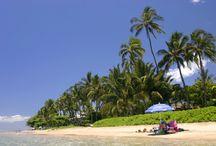Maui / by Stephanie Alfrey