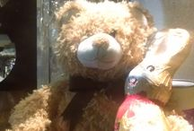 Our teddy bear story / Follow the adventures of our teddy bear, forgotten in our pub in April 2016