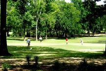 Mississippi Par 3 and Executive Golf Courses / Mississippi Par 3 and Executive Golf Courses