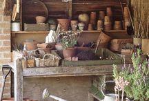 Orangerie winter storageroom
