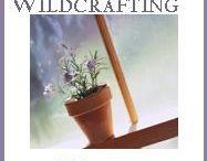 Wild Crafting Wednesdays