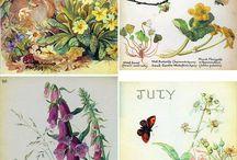 La Naturaleza en el Arte y el Diseño