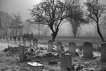 cemeteries / by Debra Browning