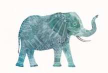 ♥ Elephants  / by Nimia Amaya