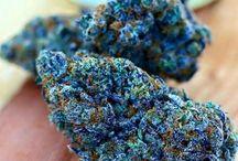 Ku$h & Weed