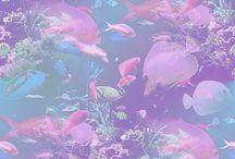神秘的な画像 / 虹色パステルって美しい