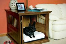 Home-pet spaces / by Nicky Walton