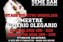 Stages de jiu-jitsu brésilien