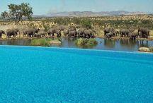 Africa - Tanzania