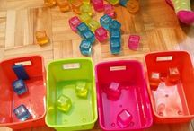 Classification/Montessori